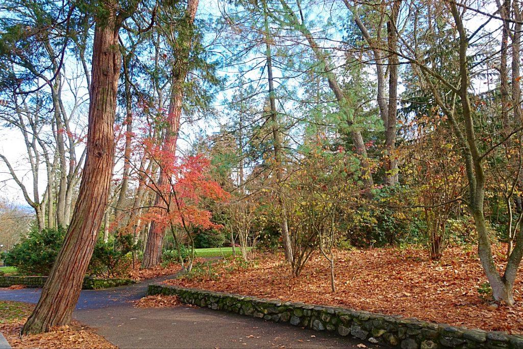 Ashland's Tilden Regional Park