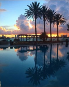 Poolside in Miami Beach at sunset